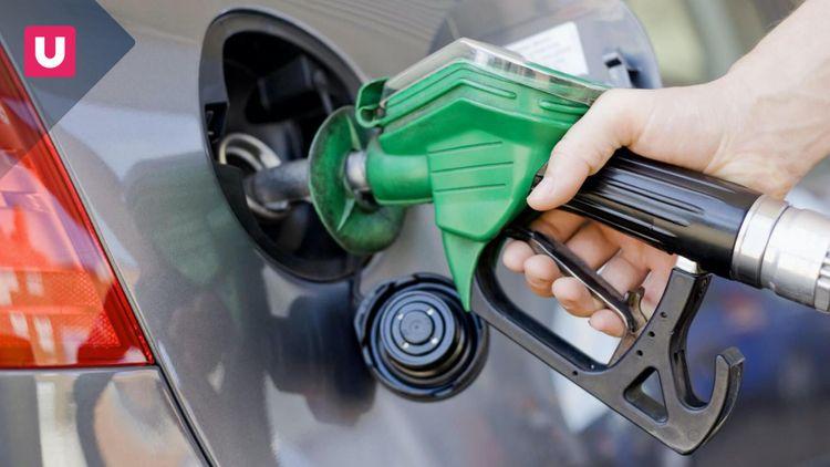 Auto benzina e diesel: dal 2025 non converranno più
